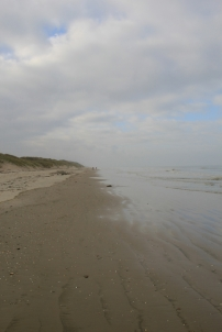 Horizon très ouvert, sensation de désert mais c'est un trompe-l'oeil. Le lieu est, au contraire, excessivement riche...
