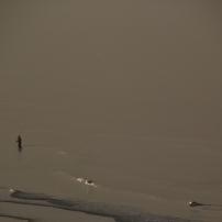 Du haut de la dune, un pêcheur de longe-côte bredouille...