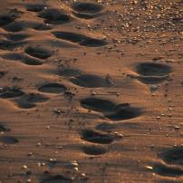 Le sable est un peu mou