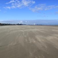 Le sable roule désespérément d'Ouest en Est, à la recherche hypothétique d'une barrière de chiendent des sables ou d'oyats. C'est le problème de la dune sur les Flandres, désavantagée pour se reconstituer par l'apport direct de sable. Voir le mini dossier 1 qui décrit plus précisément ce phénomène...