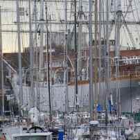 Derrière l'armée de mats de bateaux de plaisance, on distingue l'imposante coque du Duchesse Anne...