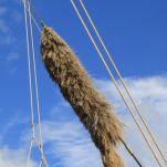 Une belle choucane, servant à protéger le cordage d'une usure consécutive à un frottement ou à un choc régulier sur une pièce du bateau, comme le mât, par exemple.
