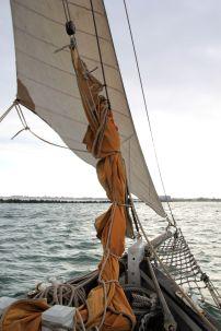 La voile d'avant blanche située devant l'autre voile d'avant orange (toujours transfilée), c'est le foc. Sa voile est en coton blanc traité pour éviter d'être piquée par les moisissures. Jadis, les bateaux avaient souvent leur voiles envoyées tandis qu'ils étaient à quai pour les faire sécher.