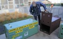 Des caisses de transport sont préparées en vue du lâcher 5 phoques veaux marins.